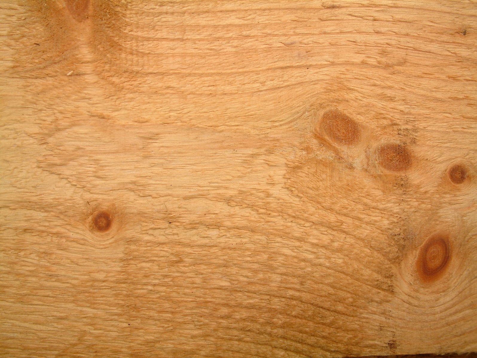 textured-old-wood-3-1504250